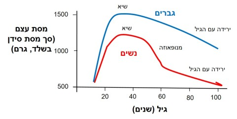 bmd-graph-hebrew